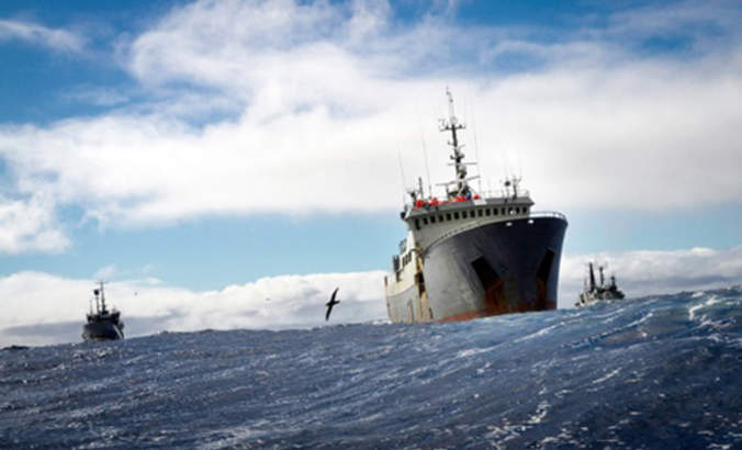 Tightening the net on illegal fishing featured image