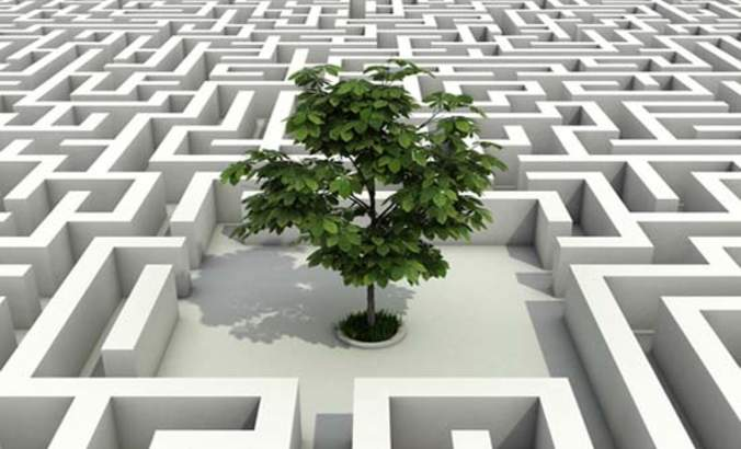 Why constraining your sustainability strategy is a smart move featured image