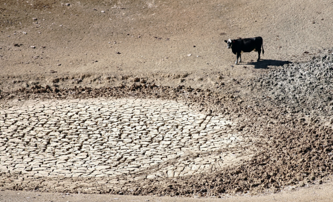 Institutional investors to Big Food: Come clean on water risks featured image
