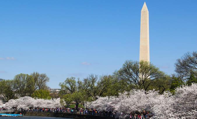Ecological restoration goes to Washington featured image