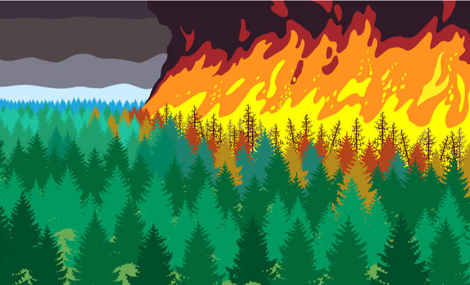 wildfire illustration