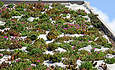Indiana Hospital to Install Green Roof Atop New Tower featured image