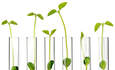 Timberland, Seventh Generation take green chemistry mainstream featured image