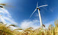Farm Bill aims to grow green power, hemp and organics featured image