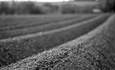 Fighting Climate Change with Efficiency and Soil featured image