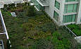 Entries Sought for Green Roof Design Contest featured image