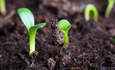 10 emerging sustainability trends to watch this year featured image
