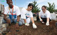 Volunteering Brings Together Social and Business Profits featured image