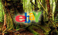 eBay Sells 'Green' Used Goods with Rainforest Reward featured image