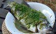Barramundi Fulfills Elusive Promise of Sustainable Seafood featured image