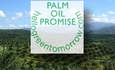 Avon Joins Sustainable Palm Oil Movement With Earth Day Pledge featured image