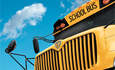 DOE Awards $10M for Plug-In Hybrid Electric School Buses featured image