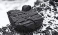 Stanford extracts coal stocks from its investment portfolio featured image