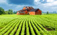 Why curbing agriculture's climate impacts is a growing challenge featured image