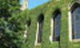 Princeton Review's Green Rating Debuts in College Guides This Summer featured image