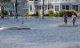 Hurricanes Underscore Insurers' Lack of Climate Change Readiness featured image
