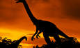 Citibank: Utilities are dinosaurs waiting to die featured image