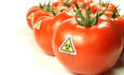 Shareowners warn Monsanto, Dow, Kraft and Coke on GMO foods featured image