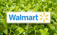 Walmart turns green roofs into research labs featured image