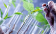 Dow, BASF, Eastman stir up new formulas for safer chemicals featured image