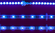 Blue light-emitting diodes earn their inventors a Nobel Prize featured image