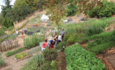 How mini-farms can yield food security featured image