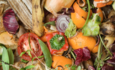 Slashing food waste is key to Sustainable Development Goals featured image