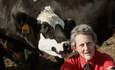 Temple Grandin, animal welfare expert, Colorado State University