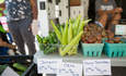 A D.C. urban farm takes on urban problems featured image