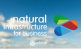 Dow and WBCSD team up on natural capital tool featured image