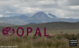 OPAL software aims to restore ecosystems featured image