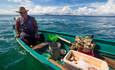 fishery, sustainable fishery
