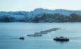 salmon fishing boats
