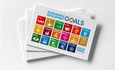 sdgs and business