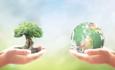 SDG giving