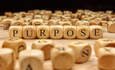 The rise of the purpose-driven business featured image