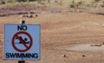 Is your business tagging water as a strategic and operational issue? featured image