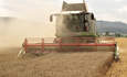 Sprint, Staples, Kimberly-Clark: the litmus test for wheat-straw paper featured image