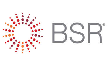 BSR at 25: What businesses need to succeed featured image
