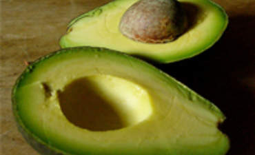 Design is an Avocado: The Layers of Green Design featured image