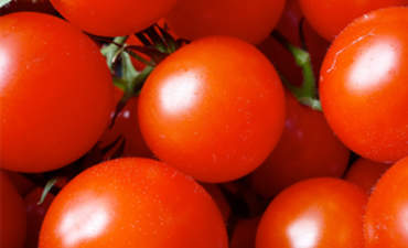 Sainsbury's Targets Tinned Tomatoes in War on Packaging featured image