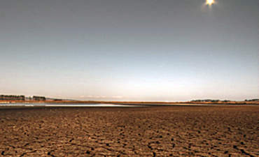 Transparency and Climate Change Risk: Getting the Right Information to Investors featured image