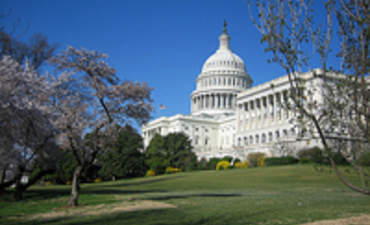 Why U.S. Businesses Want a Green Stimulus Plan featured image