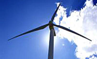 Should Businesses Invest in Renewables While the Rules are Shifting?  featured image
