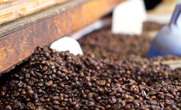 Starbucks, SABMiller take holistic approach to sustainability featured image