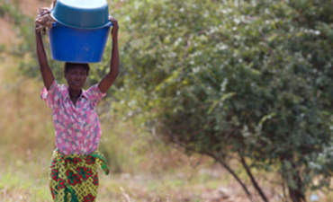 Can Mozambique be a model for sustainable food, fuel production? featured image