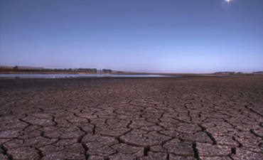 Where Desertification Meets the Bottom Line featured image