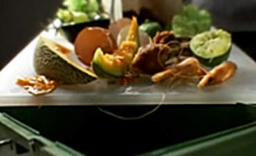 S.F. Mayor Signs First Mandatory Composting Law in U.S.  featured image