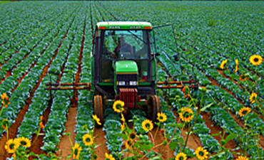 Farms, Forks and Feuds on the Road to Sustainable Agriculture featured image