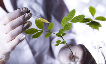 5 ways to assess how green that chemical is featured image